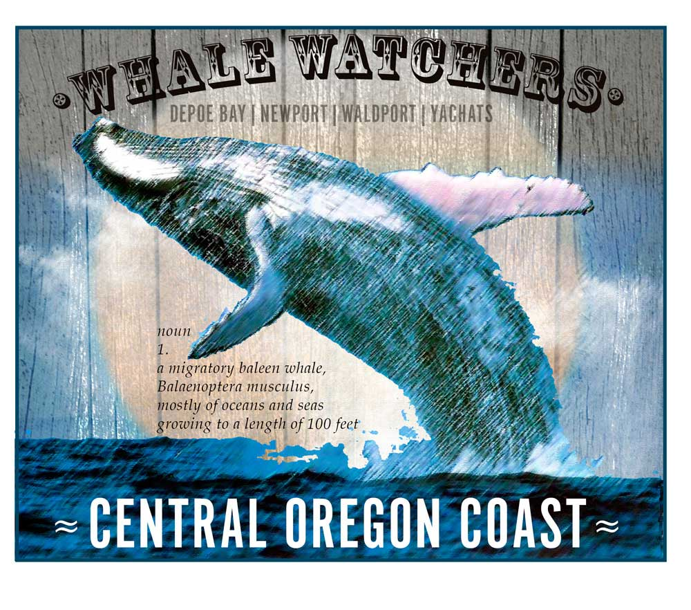 Whale-Central-Coast